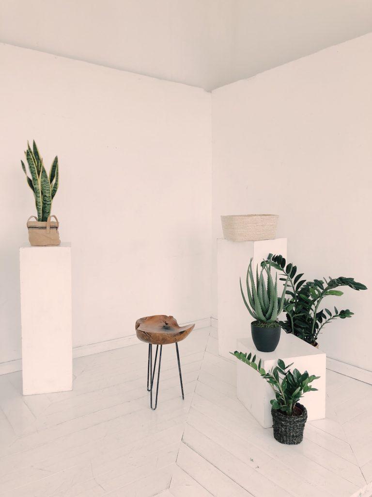 Salon en blanco y verde con decoración minimalista